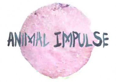 AnimalImpulse