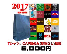 20161229fukubukuro2017teescaps